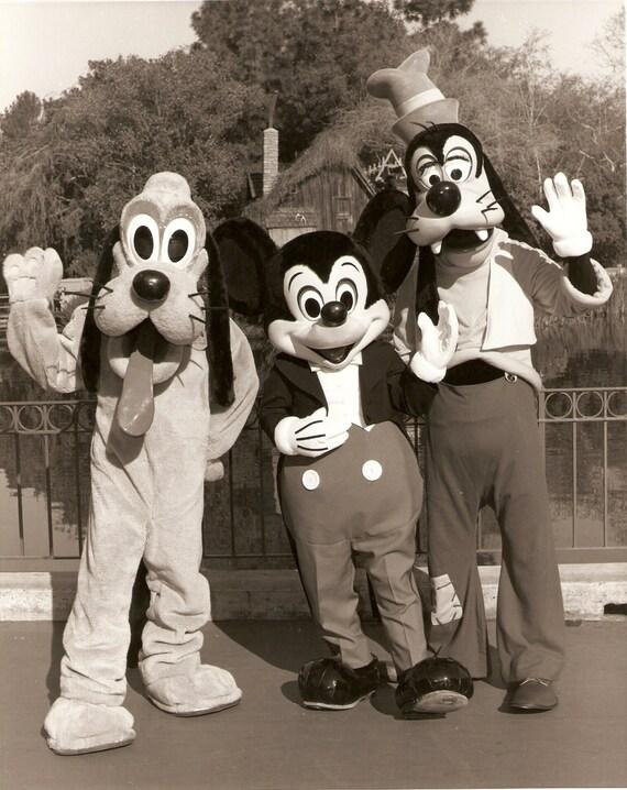 Disneyland Publicity Glossy