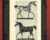 unicorn anatomy dictionary art print - unicorn art print - unicorn