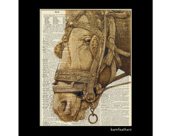 Dictionary Art Print - Horse Portrait - Book Page Art - Recycled Dictionary Page No. P83