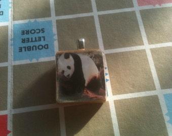 Adorable Panda Scrabble Tile Pendant