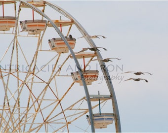 Daytona Beach - Ferris Wheel