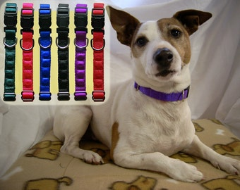 Magnetic Dog Collars with Rare Earth magnets MEDIUM Min: 38cm  Max 56cm