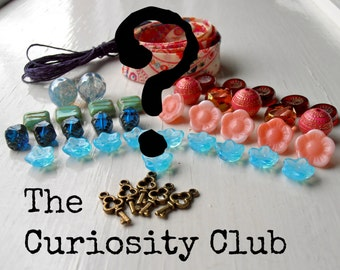 The Curiosity Club - 1 month