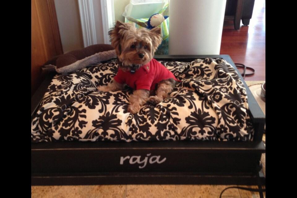 Unique Wooden Dog Beds Wooden Dog Bed For