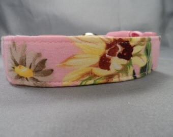 Beautiful Sunflowers on Pink Dog Collar