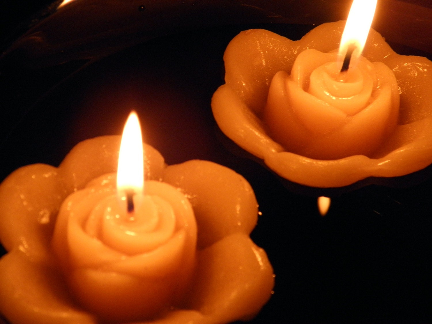 Floating Rose Candles Flowers Water Floating Flower