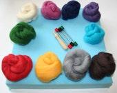 Needle Felting Kit - including 100g Merino Wool Tops, 10 colours, Needle Holder, 3 different needles, Foam Pad & full instructions