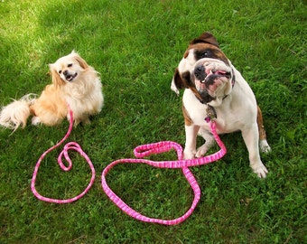 Pink Small Dog Leash Four Foot Length Variegated Pink  VPDL07