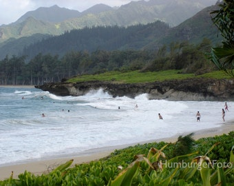 Hawaiian Holiday.   Oahu, Hawaii, tropical beach, beach photo, Hawaiian landscape, lush landscape, ocean waves, swimmers
