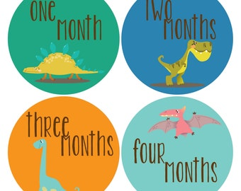 Baby Monthly Stickers, Baby Boy Monthly Stickers - Baby Shower Gift, Dinosaur, Boy