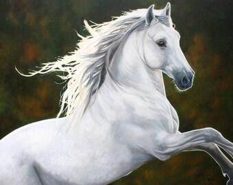 Chiarezza  - 30x40 Original Oil Painting