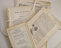 42-piece 1869-1920s ephemera paper pack. Alcott novel, birthday book, Bible dictionary, songbook
