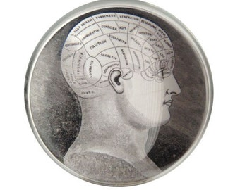 Vintage Phrenology Head, High Quality Vintage Print Glass Dome Paperweight