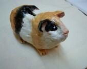 Piggy Bank.   A Piggy for your Guineas.