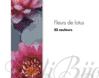 Fleurs de lotus -  PATTERN