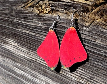 Red butterfly wing earrings. FREE SHIPPING