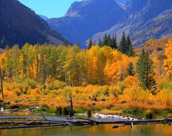 Fall at Sierra Nevada