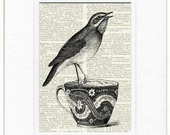 song bird and tea cup II print