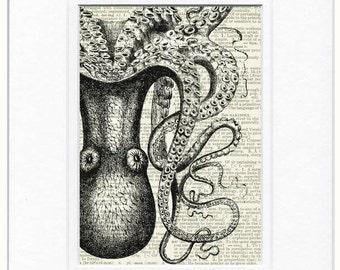 Octopus Misses print