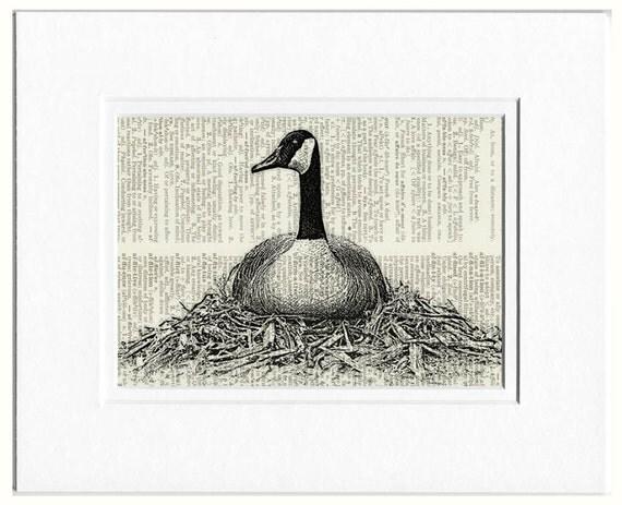 Goose Print - Canada Goose print