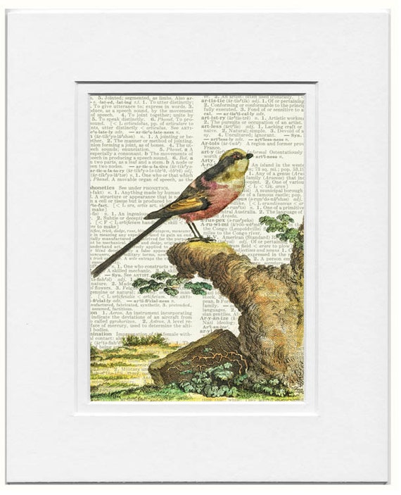 bird VII dictionary page print