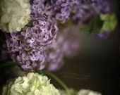 flowers lilacs spring bouquet nature photography still life photography home decor PRINT ONLY