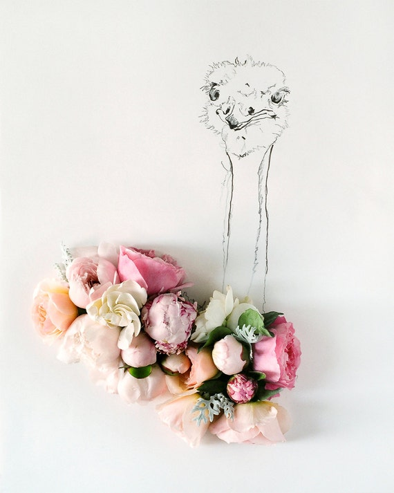 ostrich and Flower Photograph No. 88240