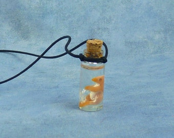 Bird Embryo Specimen Jar Necklace, Handmade Jewelry