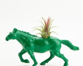 Horse Planter with Air Plant Room Decor, Dorm Room Geekery, Green, Black, Office Accessories, Get Well Gift