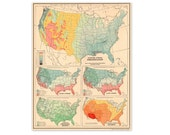 Vintage 1940s Map of the United States of America. Ready to Frame. Cottage, Shabby Chic, Pastel, Mid Century, Modern. (No. 818)