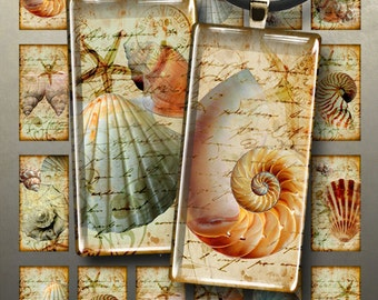 Printable Download NAUTILUS 1x2 inch Digital Collage Sheet for glass or resin domino pendants magnets bezel settings trays photo charms