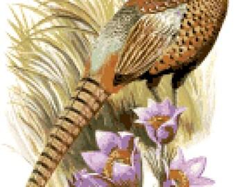 south dakota state bird flower counted cross stitch pattern