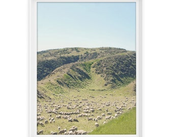 Los Angeles 16 (Sheep Hill) // Fine Art Giclée Print // Photography
