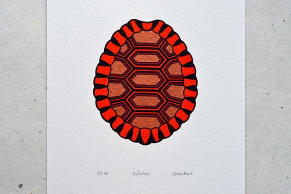Tortoise Shell / Testudines 'specimen' - Limited edition three-colour screenprint with hand-coloured details (copper)
