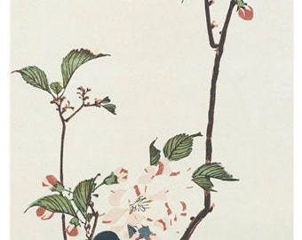 Hand-cut wooden jigsaw puzzle. CHERRY BLOSSOMS & BIRD. Hiroshige. Japanese woodblock print. Wood, collectible. Bella Puzzles.