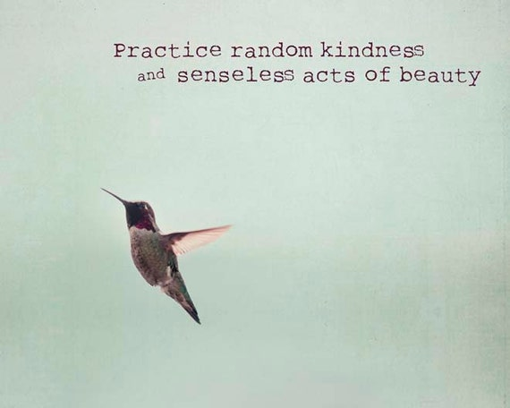 inspirational art hummingbird motivational quote wall