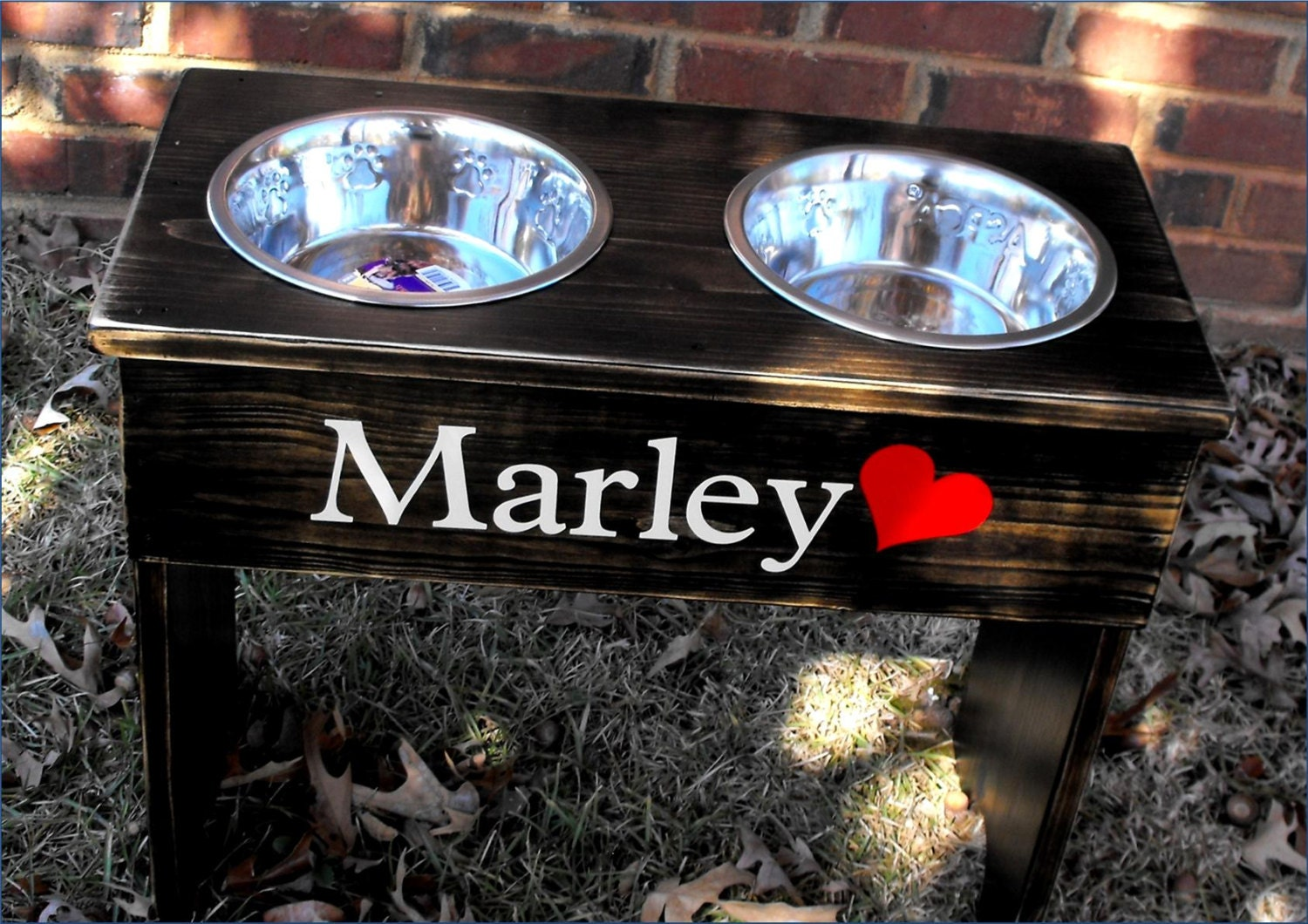 Personalized Dog Bowl Raised Stand 14 Tall Two