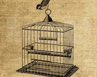Instant Download Square Vintage Cage and Bird - Download and Print - Image Transfer - Digital Sheet by Room29 - Sheet no. 815