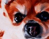 Pomeranian art small oil painting wall art macro close up pet portrait original fine art 6 x 6