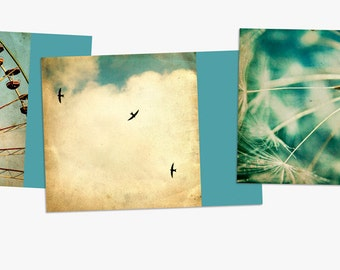 Summer of '69 - 3 Postcards Ferris Wheel vintage Texture Paper Swallows Sky Summer Dandelion Seed Flower Botany floral