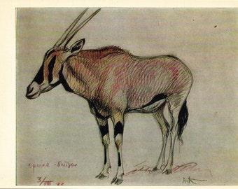 Vintage Komarov (Oryx antelope) Print - 1969, Soviet Artist