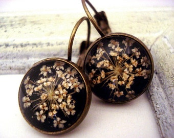 Real flower earrings - queen anne's lace in resin. Vintage style bronze settings with french clips.