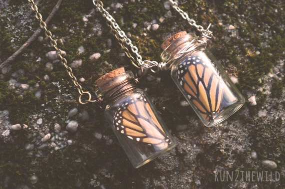 The Butterfly Effect Real Monarch Wing Bottled Necklace