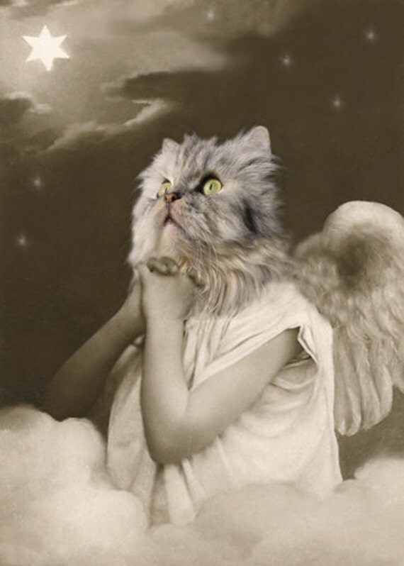 Angel Mary, Cat Print, Anthropomorphic, Whimsical Art, Collage Art, Vintage Cat, Animal Print, Photo Collage, Altered Photo, Unusual Gift