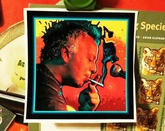 """Ween """"Gene Ween"""" Aaron Freeman High Quality Vinyl Sticker"""