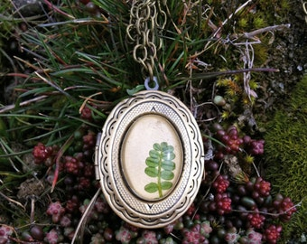 natural jewelry - nature inspired necklace locket - pressed leaf- Delicate jewelry -  real pressed green leaf and glass over beige leather