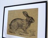 75% OFF SALE Burlap Rabbit Print // 8 x 10 // Easter  Decor