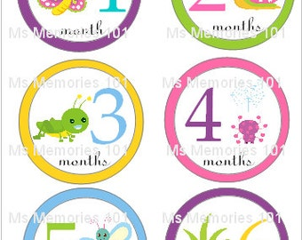 Cute as a Bug Monthly Infant Stickers