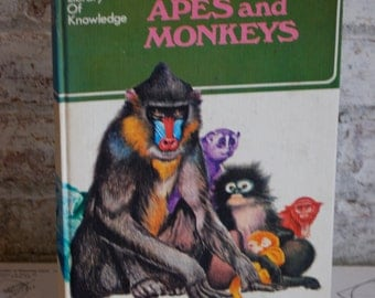 Vintage Book, Apes and Monkeys