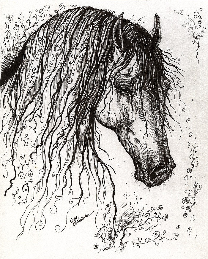 Horse With A Long Mane Original Pen Drawing